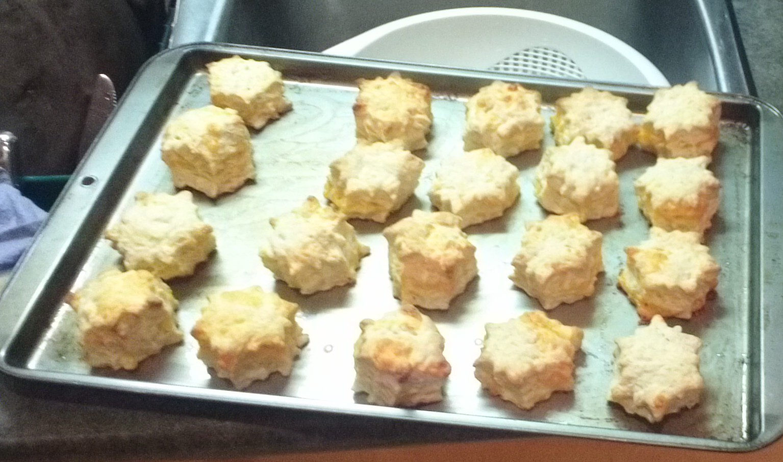 Fresh Cheese Biscuits